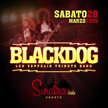 BLACK DOG IN CONCERTO AL SINATRA HOLE
